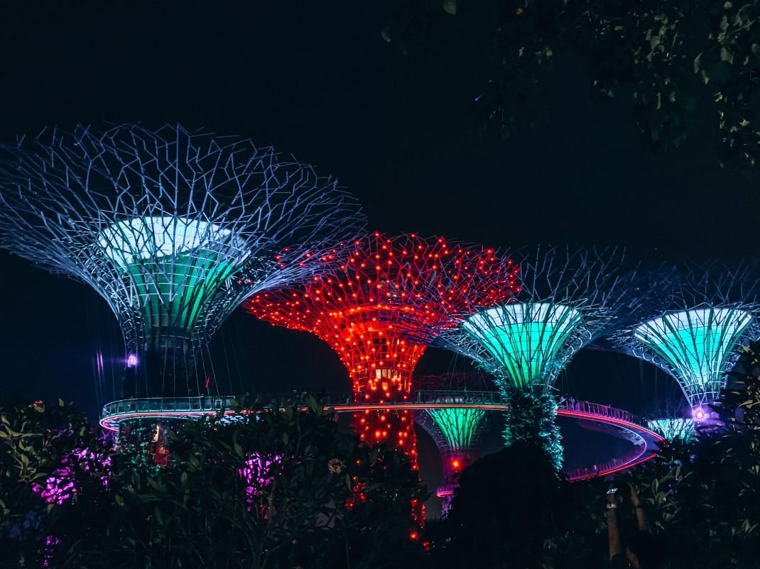 Nocny pokaz w Gardens by the Bay
