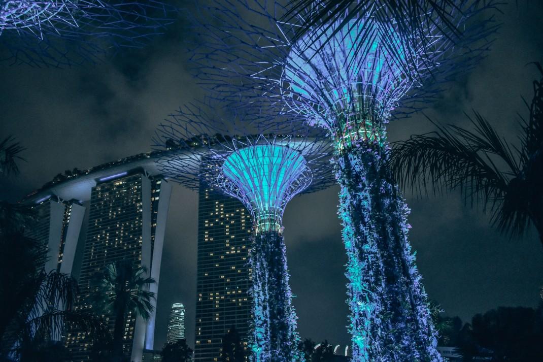 Hotel Marina Bay Sands i Gardens by the Bay